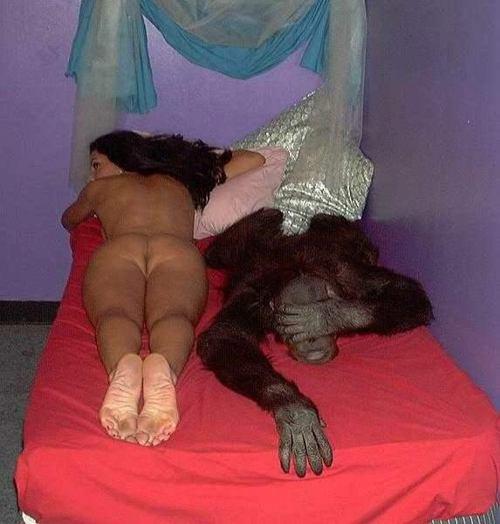 секс фото самые смешные